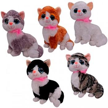 Gato Surtido *1