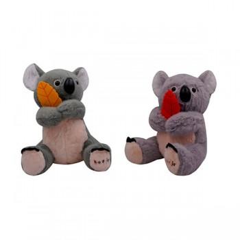 Koala *1